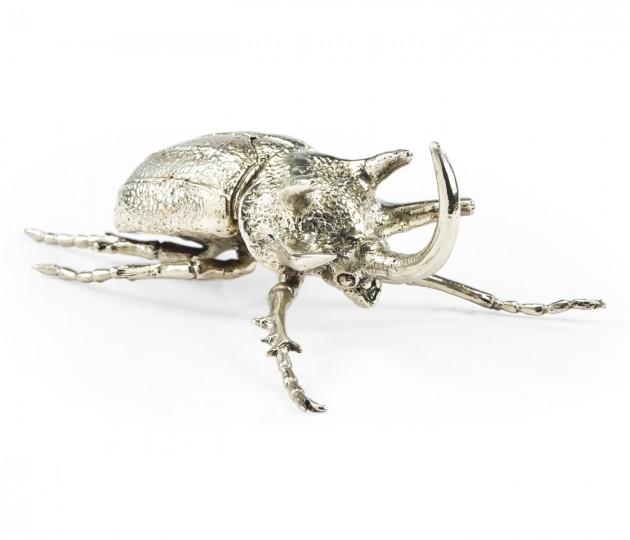 White Brass Five-Horned Rhinoceros Beetle